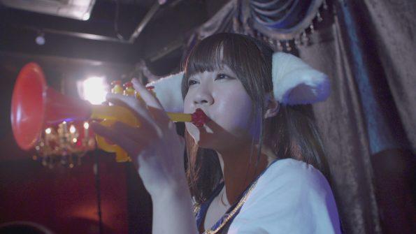 『ナマ配信』DVD発売日
